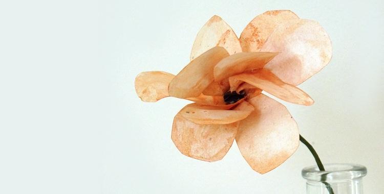 Papierblumen Basteln Aus Krepppapier, Seidenpapier