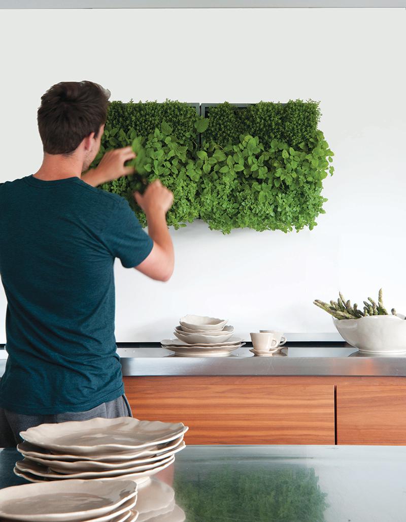 Vertikaler Indoor- & Outdoor-Garten 'Karoo'