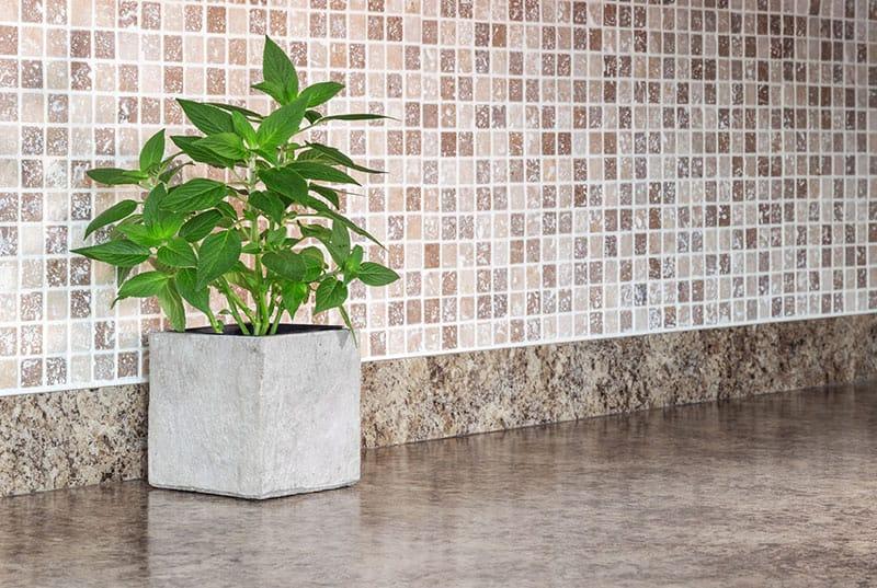 Pflanzkübel in Betonoptik sind optimal geeignet für den modernen Wohnraum