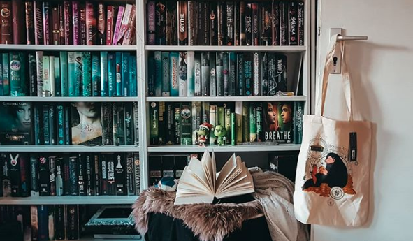 Ein echter Hingucker sind Regale mit farblich geordneten Büchern