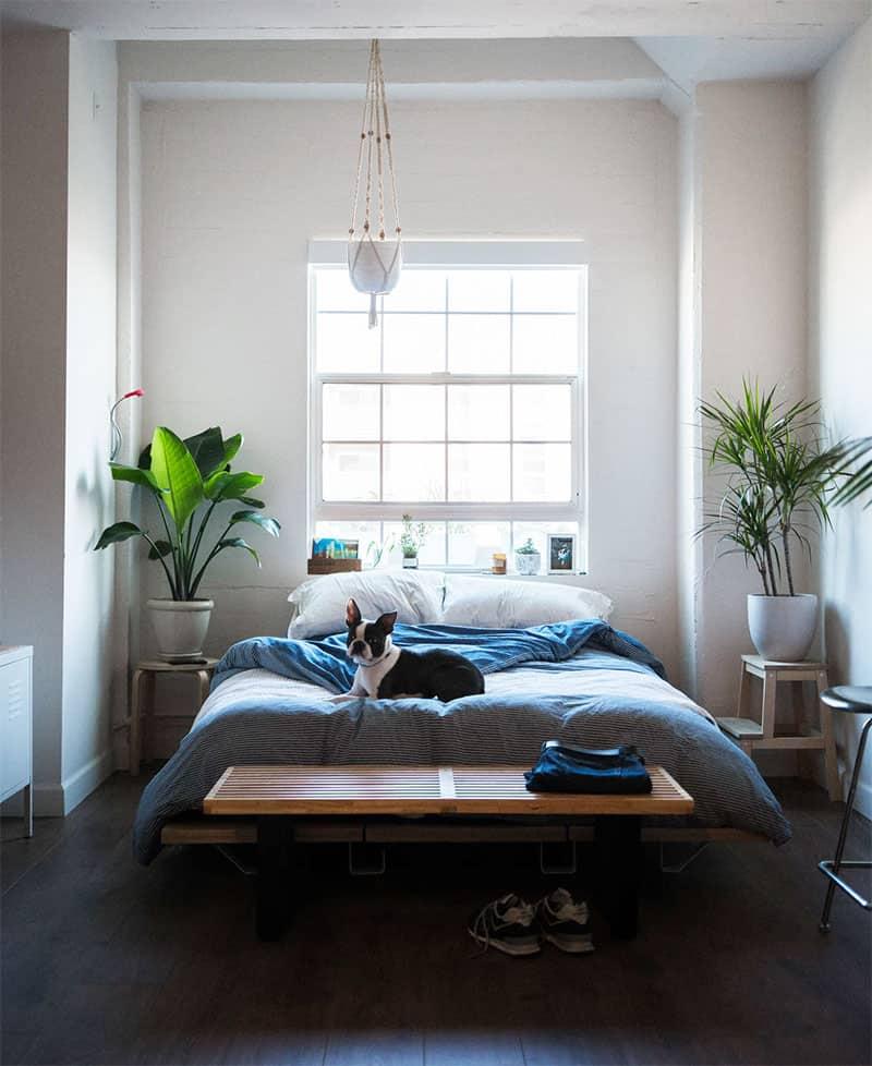 Platz schaffen für Grünpflanzen im Schlafzimmer - kreativLISTE